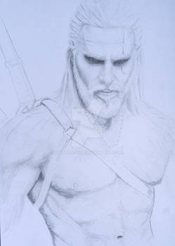 WIP The witcher