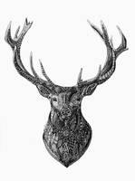 Zentangle Deer