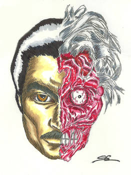Billy Dee Williams as Harvey Dent/Two-Face