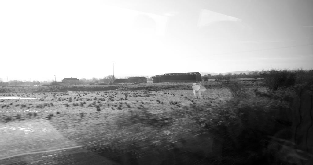 On a Train in the West