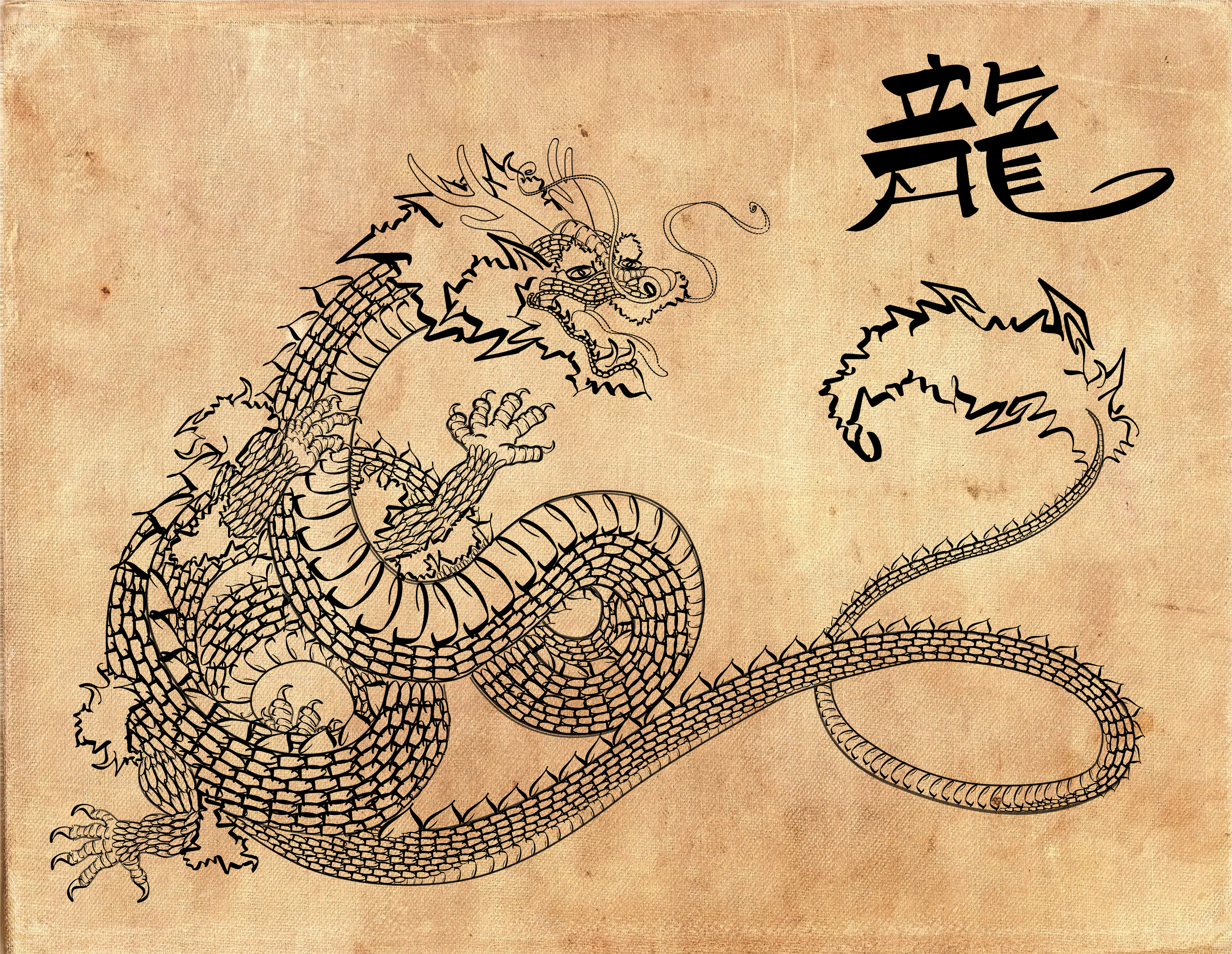 Chinese Imperial Dragon by curtydc on DeviantArt