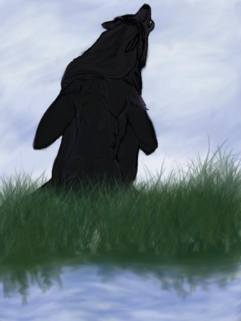 Munnin on the water by RavenxLadyxMunnin
