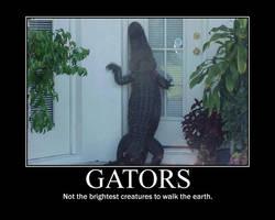 motivational poster gators by Konfan2