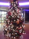 Late Late Christmas