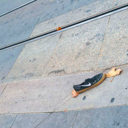 Nike Swoosh Sneaker San Francisco 9/29/2016