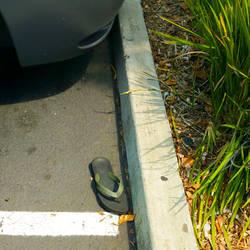 Green Flip Flop El Cerrito 8/20/2016