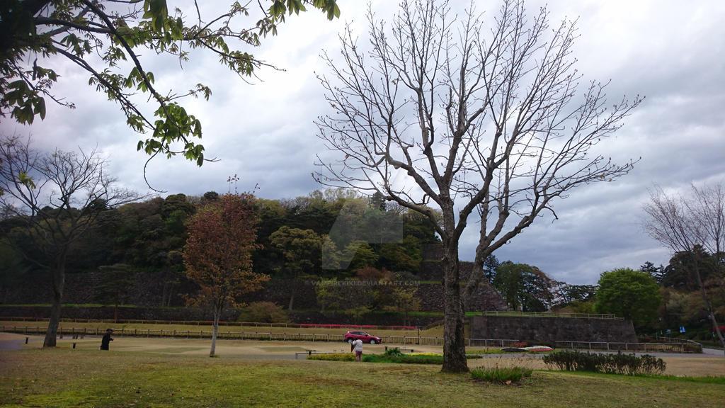 2016 Kanazawa outdoor view(1) by vampirekiki