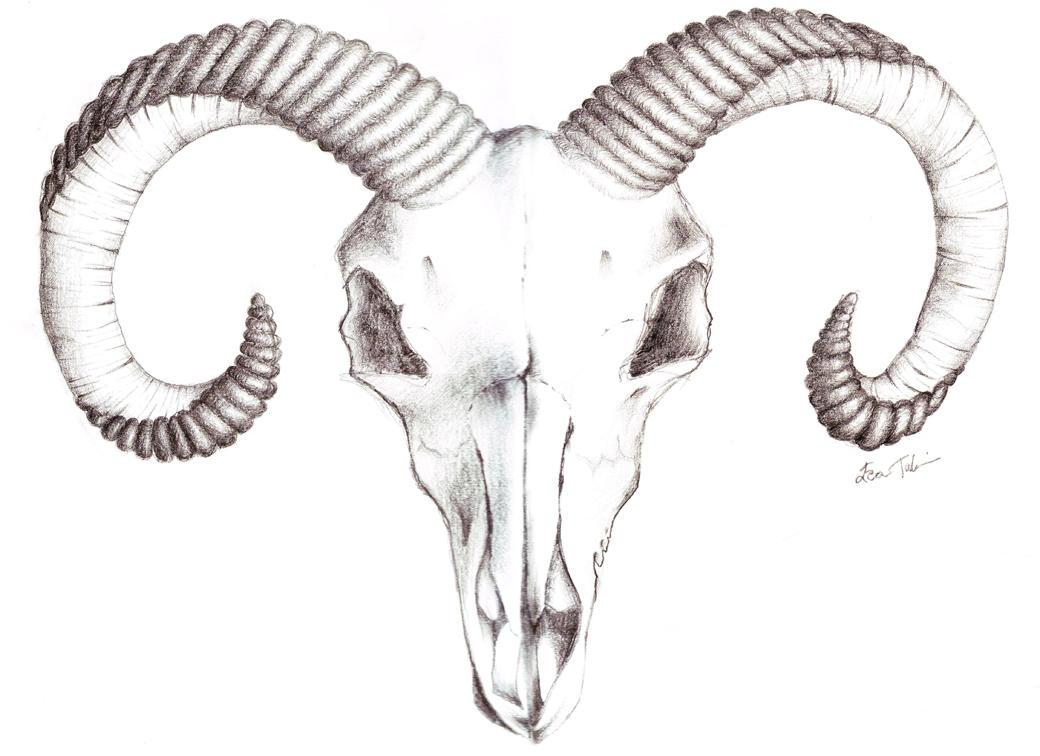 Goat skull tattoo by