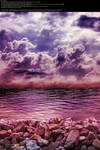 Purple on the Rocks - Stock