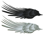 Good and Evil Angel Wing PNG 2