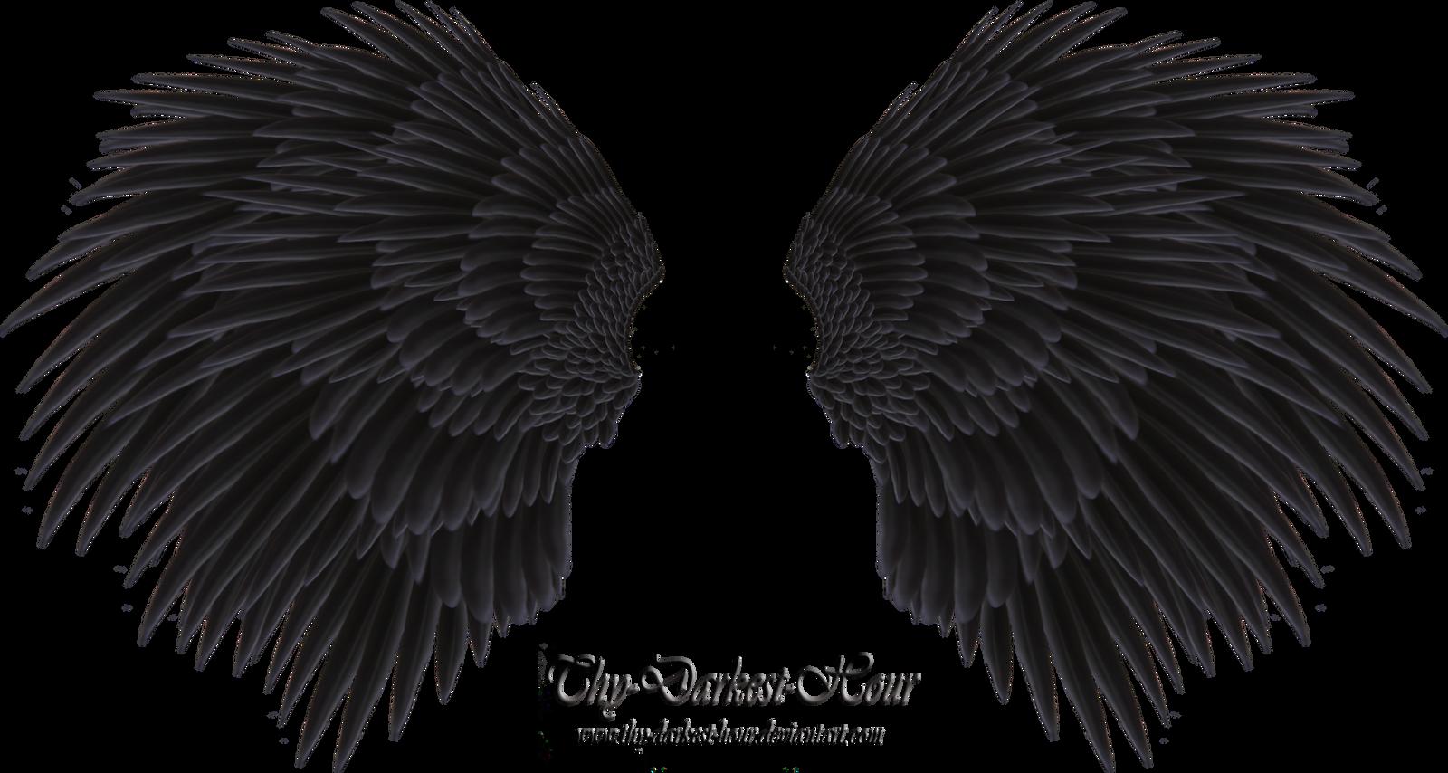 Black Angel Wing - Stock by Thy-Darkest-Hour