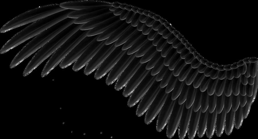 Spread black wings png by thy darkest hour on deviantart - Fauteuil en polycarbonate transparent ...