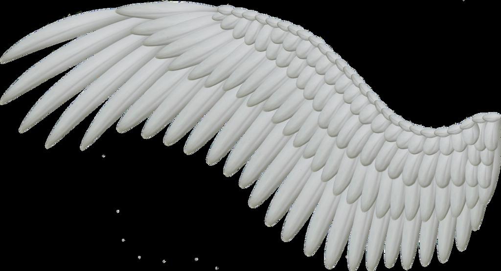 Angel Wings Wallpaper  WallpaperSafari