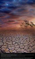 Sahara Sunset - Stock