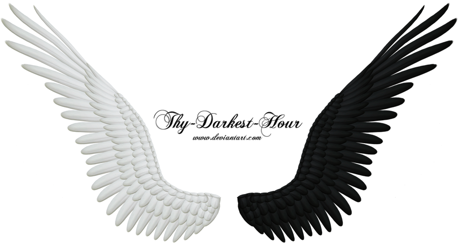 good evil wings png 04   new large size by thy darkest hour d4gjjxz