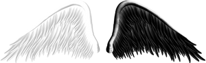 Good and Evil Angel Wings PNG 05