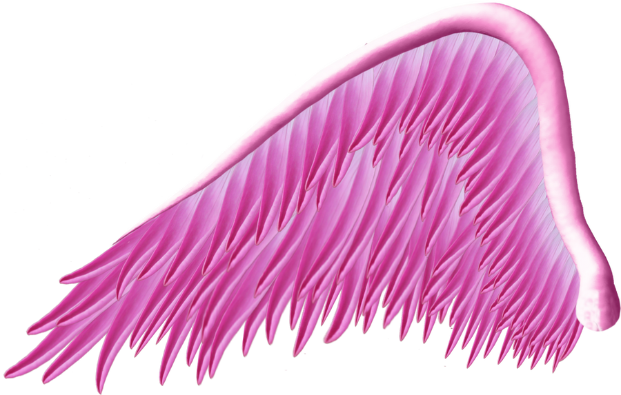 Pink Angel Wing PNG by Thy-Darkest-Hour