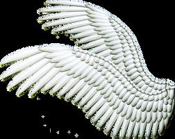 Double Spread Wings - White by Thy-Darkest-Hour