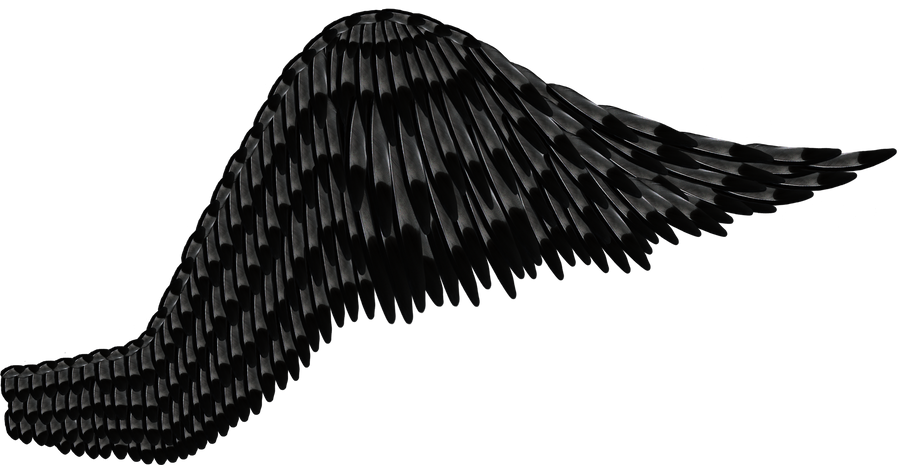 Dark Angel Wings Png Feathered black gray wing by
