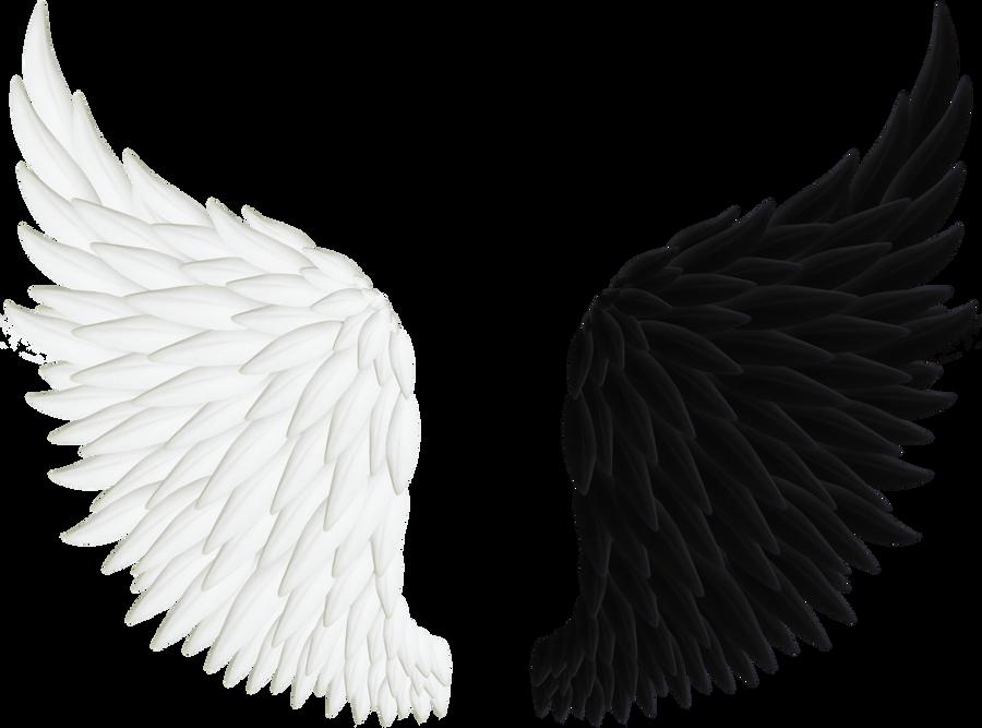 Angel Wings PNG 06 by