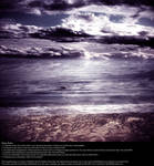 Violet Afternoon - Stock