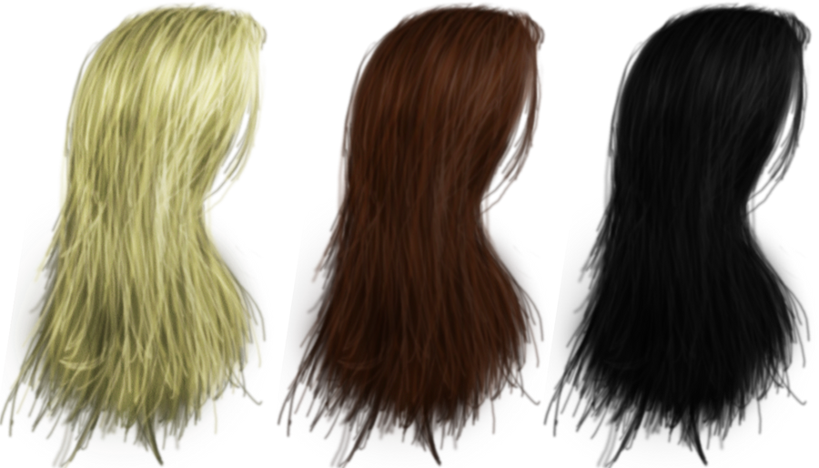 Hair PNG's 04