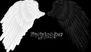 Angel Wings 08 PNG