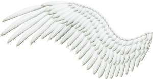Feathered Wing - White