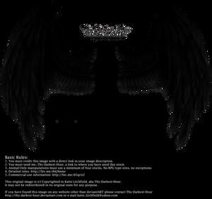 Winged Fantasy - Black