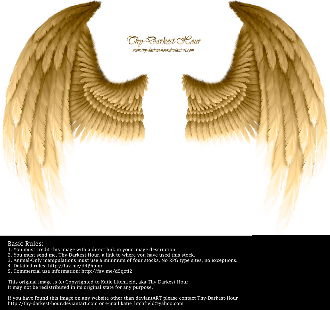 Winged Fantasy - Golden by Thy-Darkest-Hour
