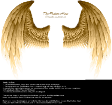 Winged Fantasy - Golden