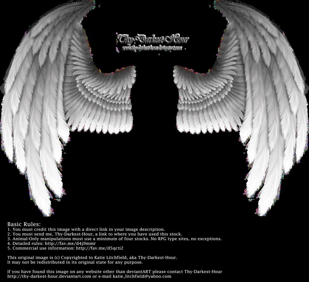 Winged Fantasy - Silver by Thy-Darkest-Hour