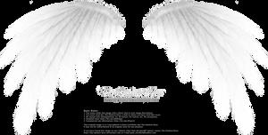 Simplistic Wing - White