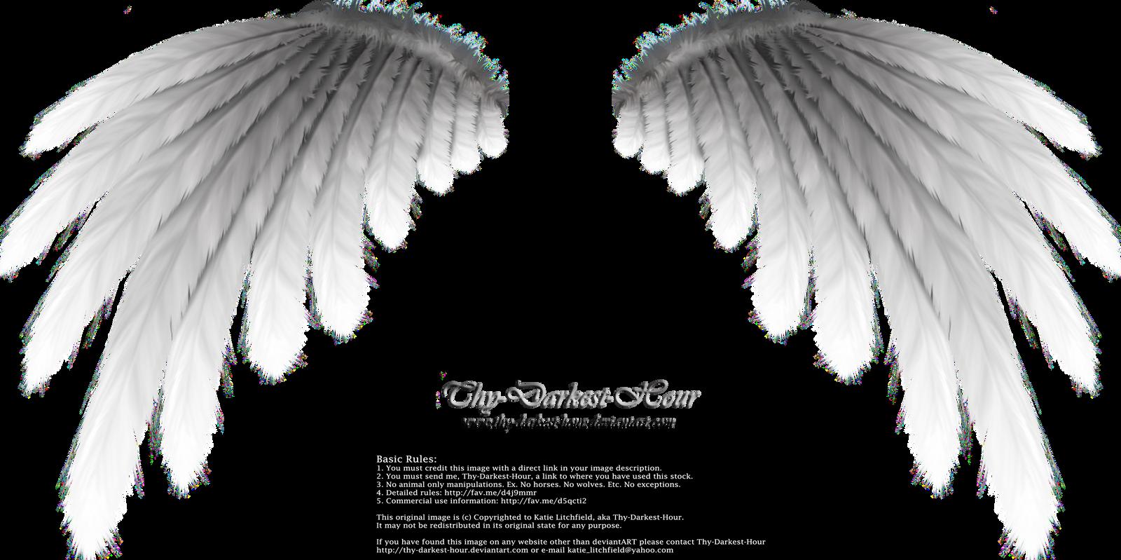 Simplistic Wing - Silver by Thy-Darkest-Hour