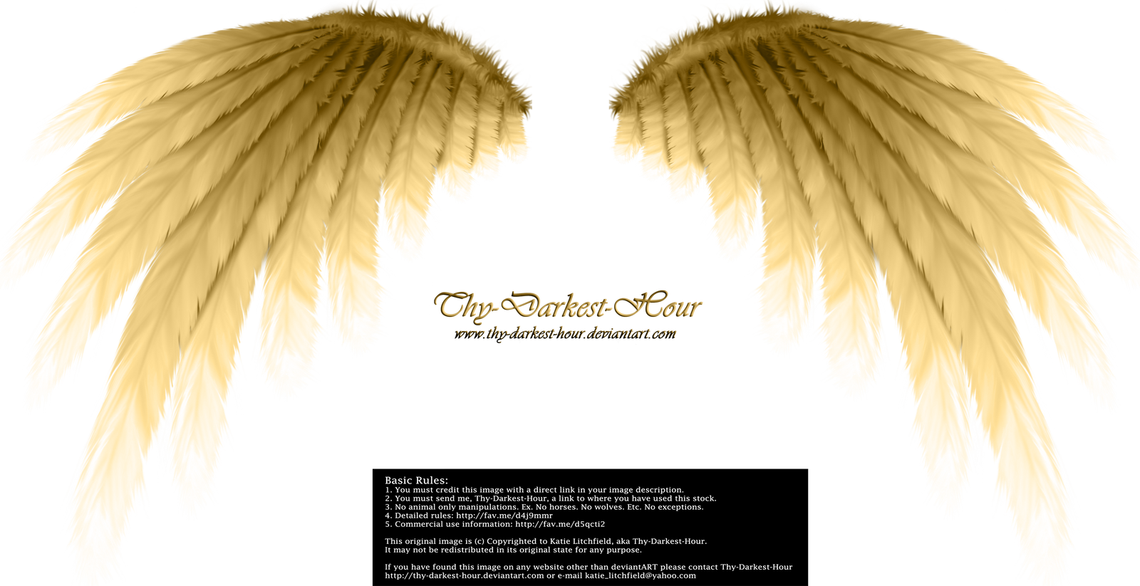 Simplistic Wing - Golden by Thy-Darkest-Hour