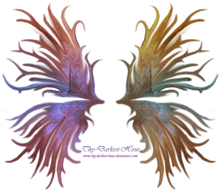 Frilled Fairy Wings 01
