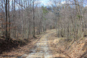Barren Road 02 by Thy-Darkest-Hour