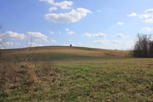 Springtime Field 01 by Thy-Darkest-Hour