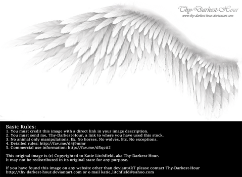 Winged Perfection - White