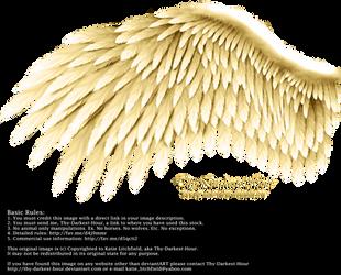 Romantic Wing - Golden by Thy-Darkest-Hour