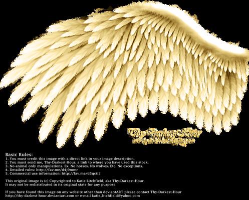 Romantic Wing - Golden