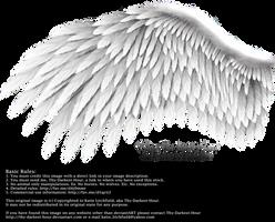 Romantic Wing - Silver by Thy-Darkest-Hour
