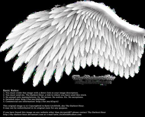Romantic Wing - Silver