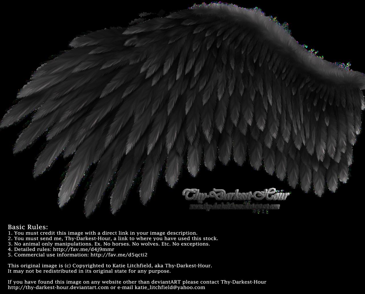 Romantic Wing - Black