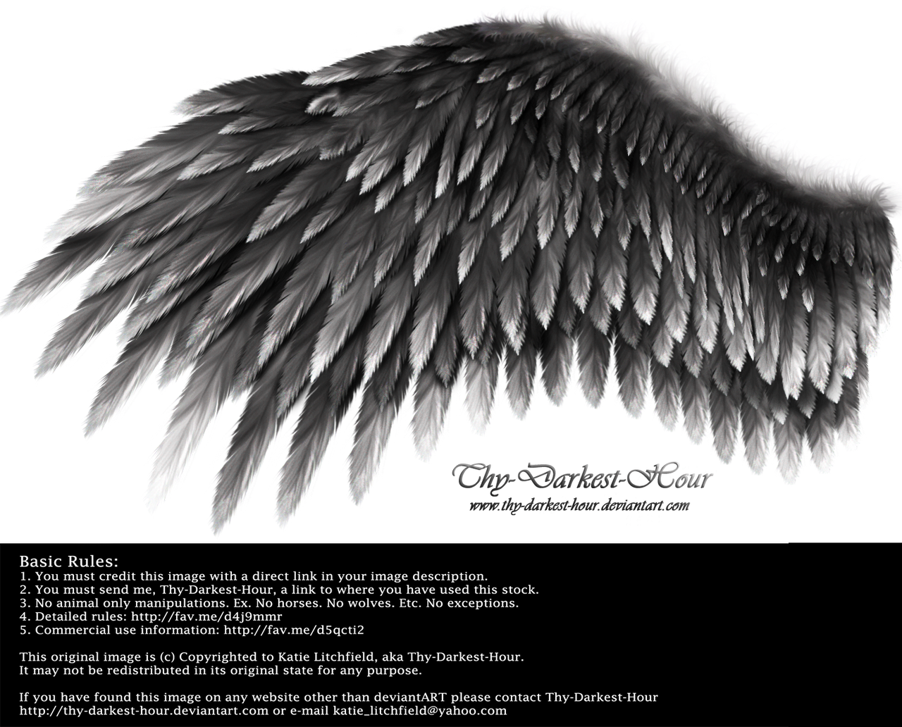 Romantic Wing - Black-Gray by Thy-Darkest-Hour
