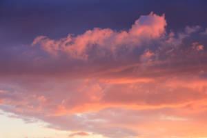 Sunset Mar 24 01 by Thy-Darkest-Hour