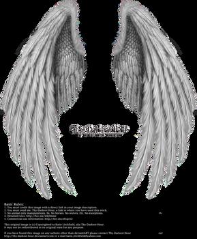 Winged Fantasy V.2 - Silver