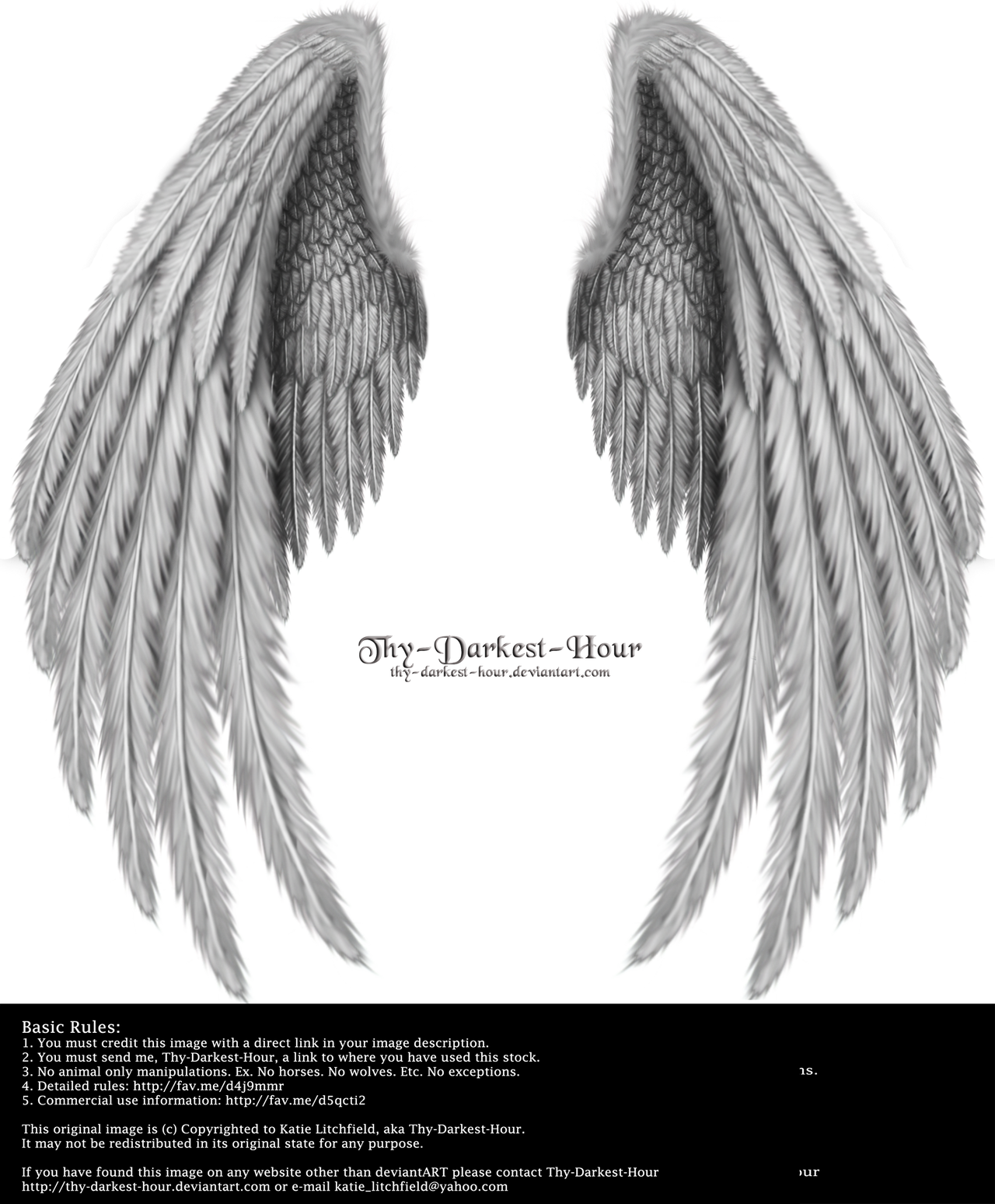 Winged Fantasy V.2 - Silver by Thy-Darkest-Hour