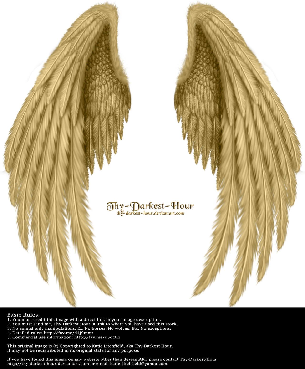 Winged Fantasy V.2 - Golden by Thy-Darkest-Hour
