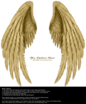 Winged Fantasy V.2 - Golden